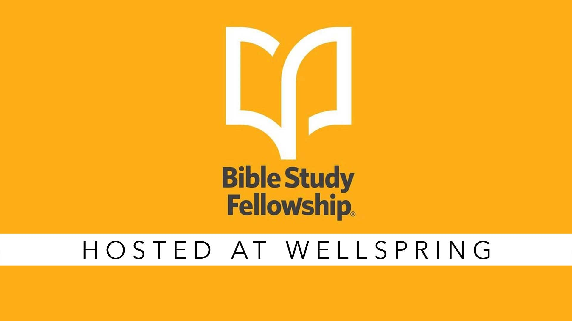 Review of Bible Study Fellowship (BSF) including class ...
