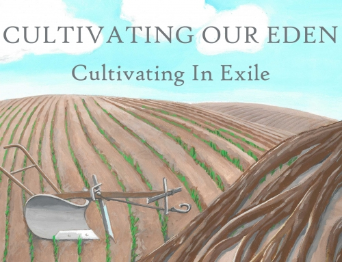 Cultivating In Exile – Wheaton
