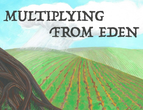 Multiplying From Eden – Wheaton