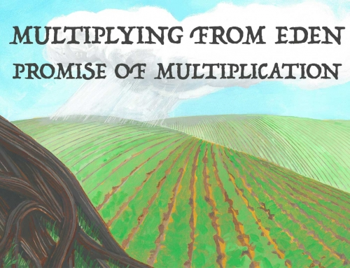Promise Of Multiplication – Wheaton