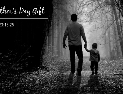 A Father's Day Gift – Warrenville