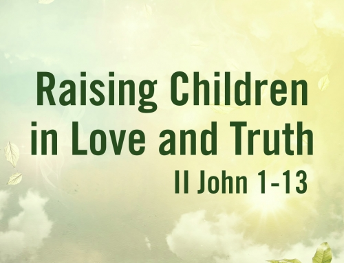 Raising Children In Love And Truth – Warrenville