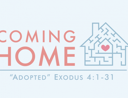 Adopted – Exodus 4:1-31 IMPEL Study (September 29, 2019)
