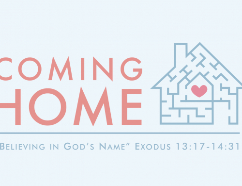 Believing in God's Name – Exodus 14:5-31 IMPEL study (November 17, 2019)